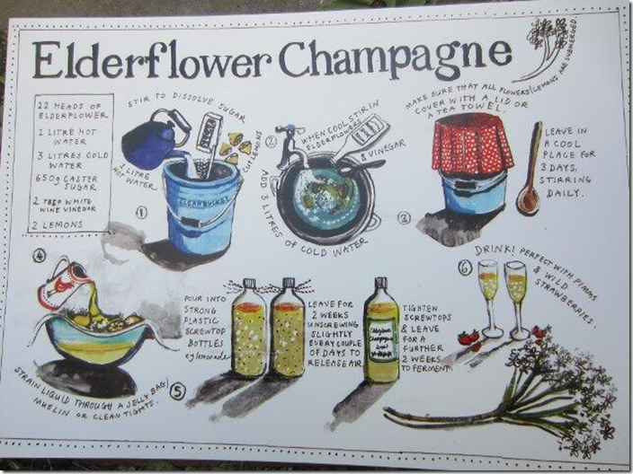 elderflowerchampagne